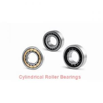 NNU4092MAW33 NNU4140MAW33 CYLINDRICAL ROLLER BEARINGS TWO-Row